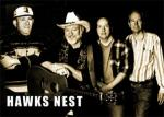 Neil Cotton & Hawk`s Nest